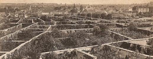 Le mur à pêches de Montreuil