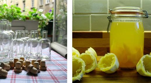 Faire son alcool maison la campagne paris for Alcool de menthe fait maison